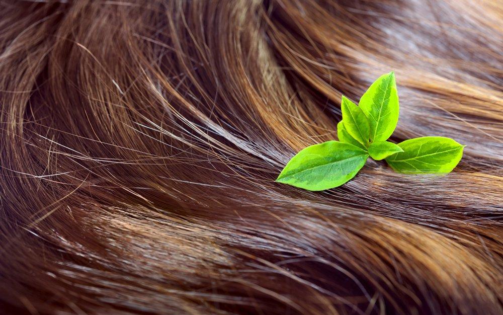5 dobroczynnych składników naturalnych szamponów do włosów - sanaja