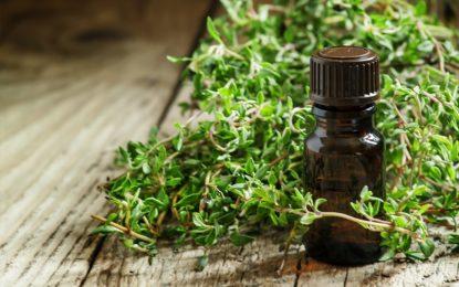 Olejek tymiankowy - właściwości i zastosowanie w kosmetyce