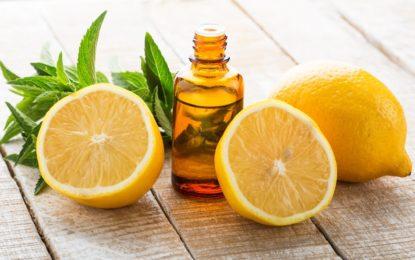 olejek cytrynowy - właściwości i zastosowanie w kosmetyce - sanaja