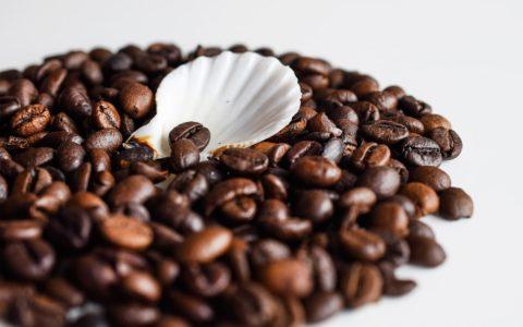 kawa - właściwości i zastosowanie w kosmetyce - sanaja